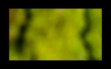 Captura de pantalla 2017-03-08 a la(s) 21.24.59
